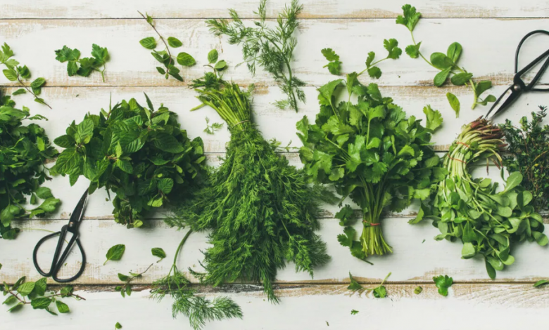 Yeşillikleri Buzdolabında Saklamanın Püf Noktaları